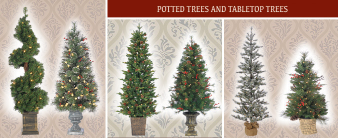 Sterling Potted & Tabletop Trees