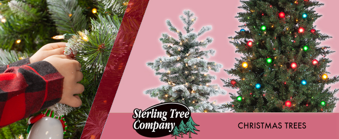 category slides TREES 2