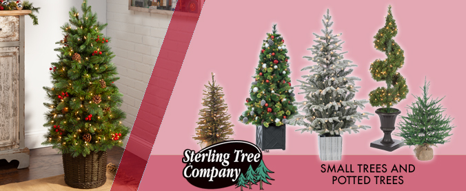category slides TREES 3